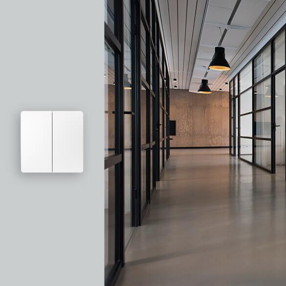 EBELONG ESL No-neutral smart switch controller