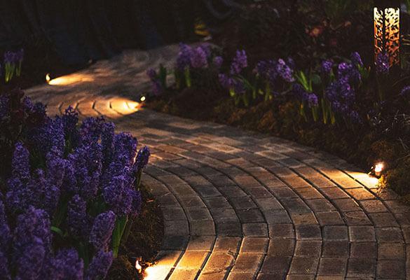 EBELONG automate-your-home 20 o'clock garden walk